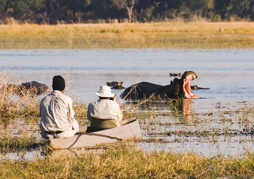 Okavango Delta is a UNESCO World Heritage site