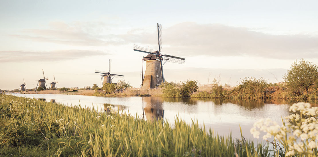 Encounter the Netherlands landscape of rustic windmills, flat fields and local plants at Kinderdijk
