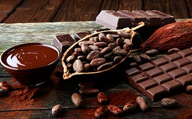 Learn about the cocoa bean