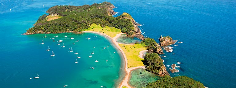 Marvel at the vibrant colours of the Bay of Islands